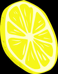 slice of lemon.jpg
